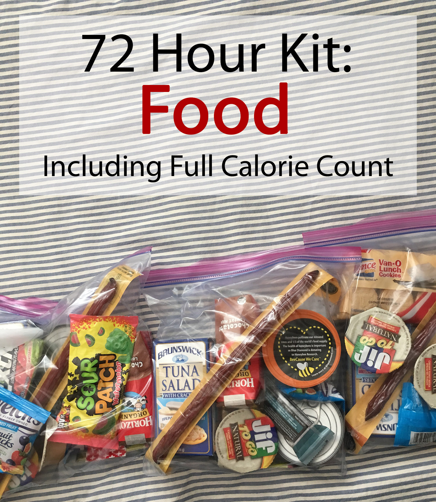 72 Hour Kit: Food (with calorie count). Don't get led astray — active adults need a lot of calories to stay on the ball in an emergency. How does your kit stack up?